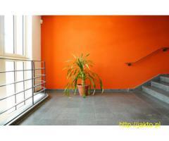 Usługi Remontowe - Malowanie,Szpachlowanie,Ścianki K-G