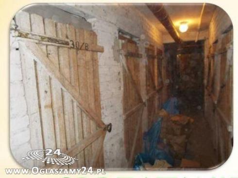 Czyszczenie piwnic garaży strychów od 50 zł Warszawa