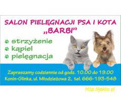 Salon pielegnacji Psa i Kota,, BARBI''