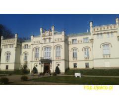 Andrzejki w Prawdziwym Pałacu