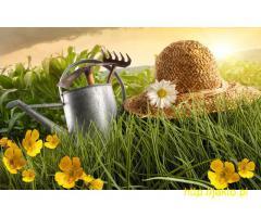 Projektowanie-zakładanie-pielęgnacja ogrodów-całe podlaskie-Przyjmujemy zlecenia na sezon 2016