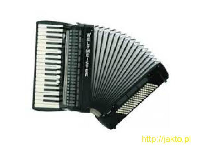 akordeonista plus  wokal