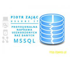 Naprawa bazy danych MSSQL, baz Płatnika, Wapro, Insert, inne