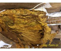 Sprzedam  Bułgarski Liść Tytoniu