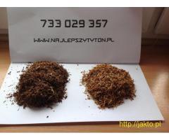 Tani Tytoń Absolutnie Brak Śmieci Kołków Najlepszy Mocny Tyton Na internecie