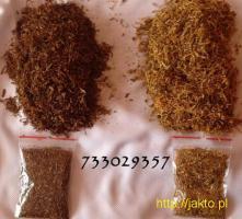 Wysokiej jakości tytoń,tyton 85zł/kg,różne rodzaje 733-O29-357