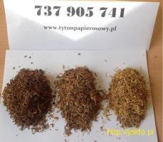 Tytoń, Okazja, Tyton, Tani, korsarz route66 viceroy chesterfield tyton